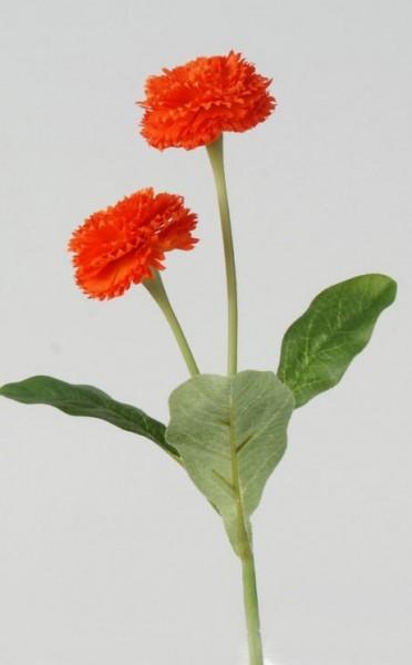 Formano Bellis mit Blatt 25 cm orange