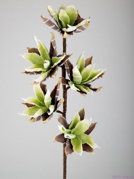Formano Deko-Zweig m Blüten 75cm